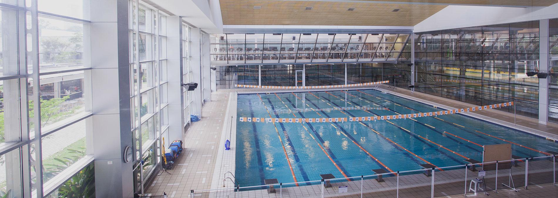 Banner natação